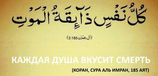 аяты о смерти в Коране