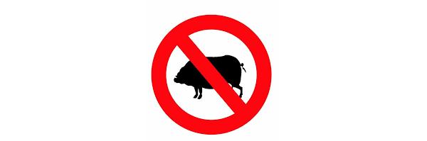 почему мусульмане не едят свинину