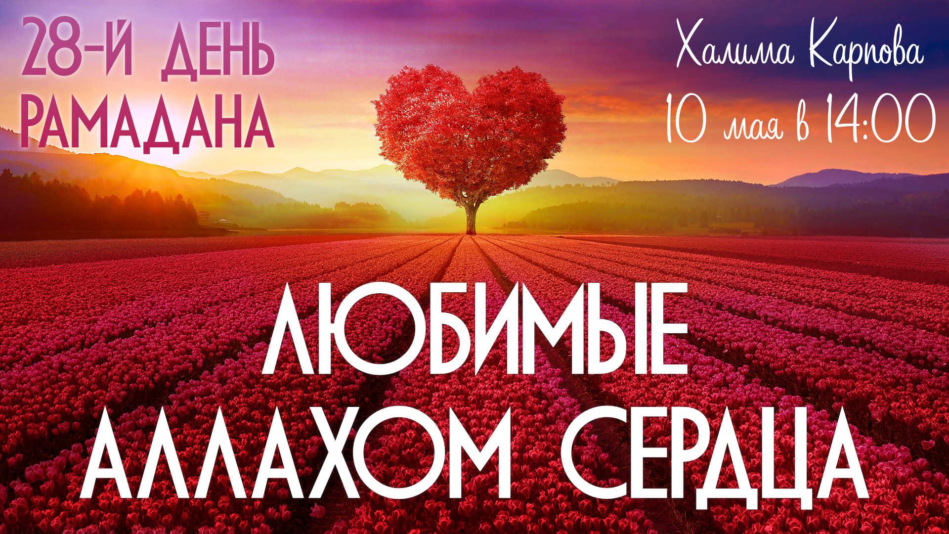 Любимые Аллахом сердца (день 28-й)