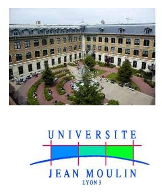 Лионский университет имена Жана Мулена